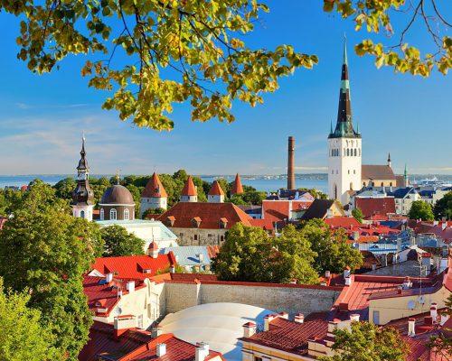Billede for Fælles studietur til Baltikum